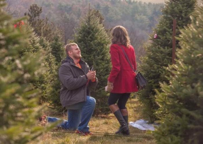 Mariah's Proposal in Farr's Christmas Tree Farm, Jersey Shore, PA