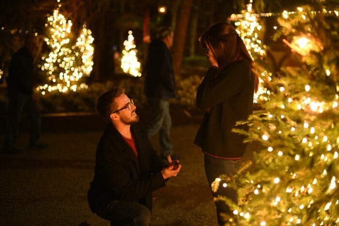 Proposal Ideas Christmas Town at Busch Gardens