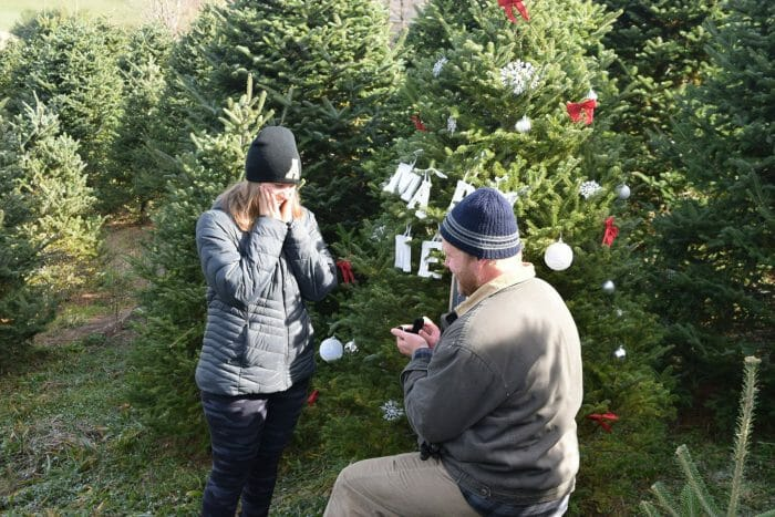 Where to Propose in Greene Family Tree Farm, Boone, NC
