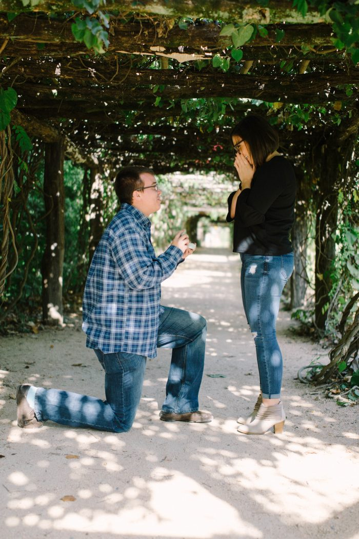 Where to Propose in Chapel Hill, North Carolina