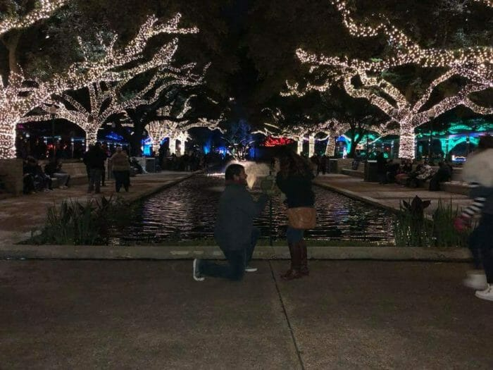 Where to Propose in Houston zoo