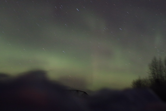 Dana's Proposal in Talkeetna, Alaska under the Northern Lights