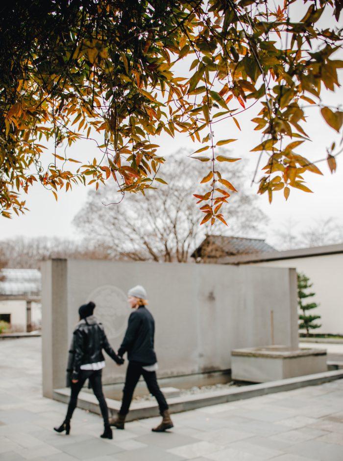 Marriage Proposal Ideas in National Arboretum, Washington D.C.