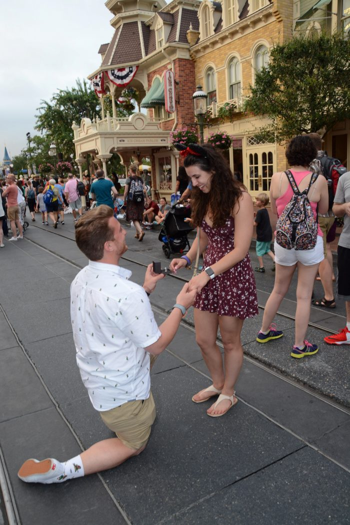 Marriage Proposal Ideas in Cinderella Castle Walt Disney World