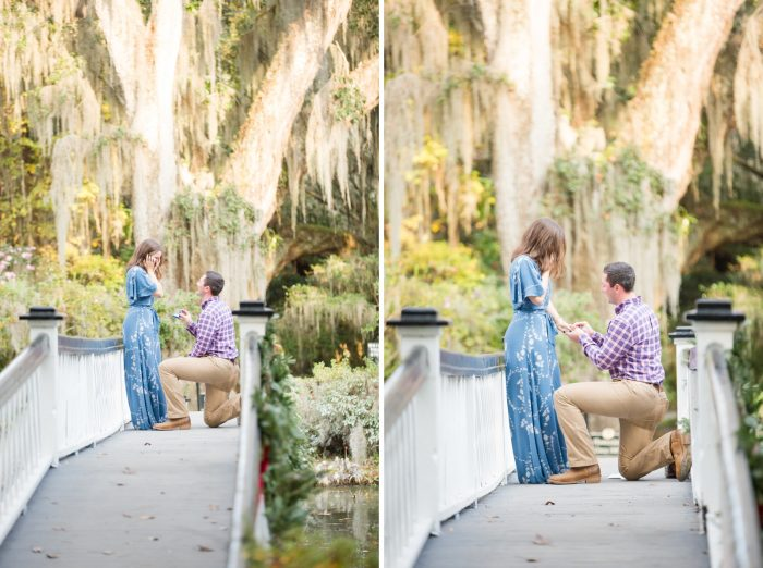 Marriage Proposal Ideas in Magnolia Plantation & Gardens - Charleston, SC