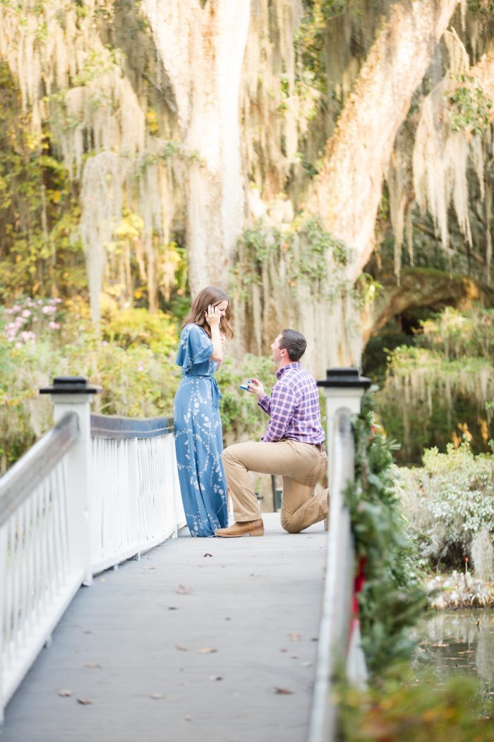 Sydney's Proposal in Magnolia Plantation & Gardens - Charleston, SC