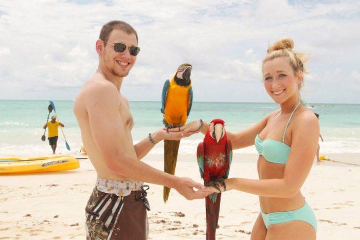 Marriage Proposal Ideas in Malibu Beach
