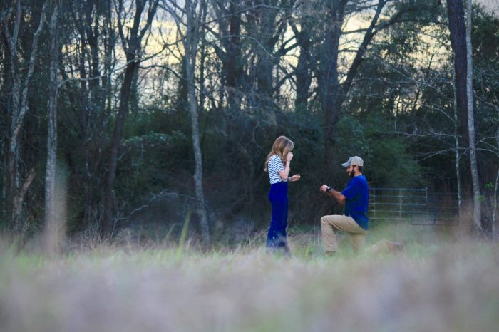 Wedding Proposal Ideas in Rehobeth Alabama
