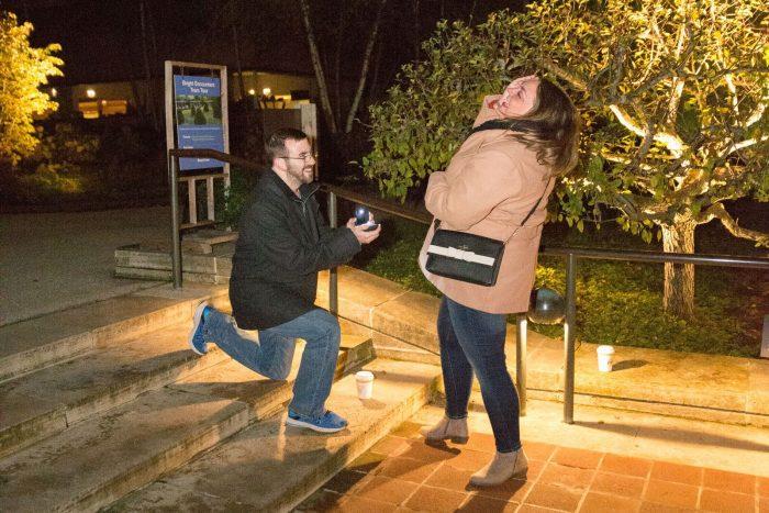Lauren and Adam's Engagement in Chicago Botanic Gardens