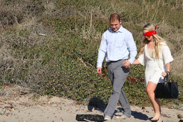 Proposal Ideas Malibu Beach