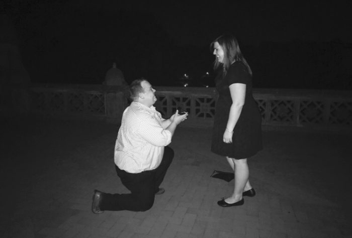 Marriage Proposal Ideas in Central Park, Nee York City