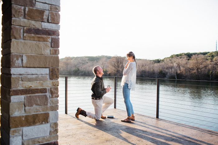 Image 6 of Regan and Tug