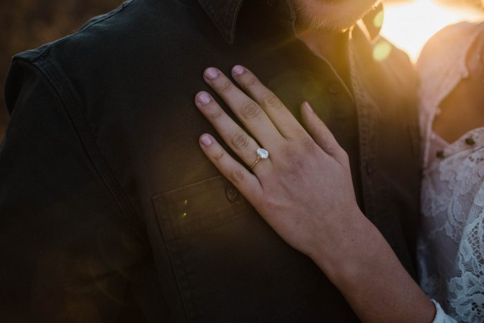 Image 11 of Regan and Tug