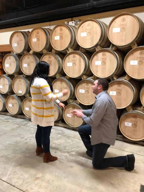 Wedding Proposal Ideas in Lynfed Winery, Roselle IL