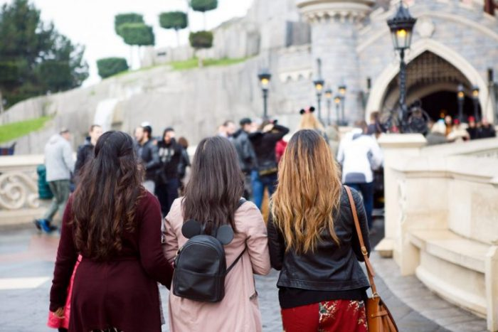Malvinder and Sandeep's Engagement in DisneyLand Paris