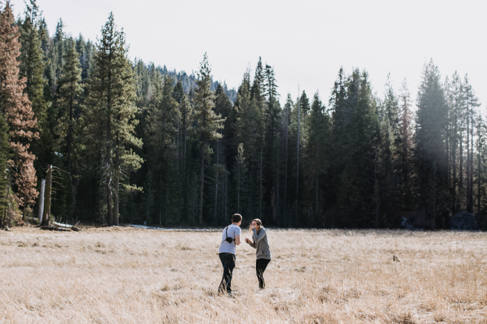 Wedding Proposal Ideas in Hume Lake, CA