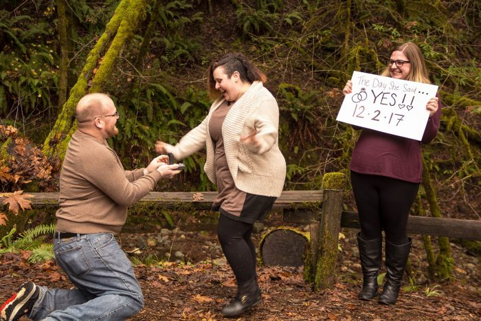 Engagement Proposal Ideas in Armstrong Woods, Guerneville, CA