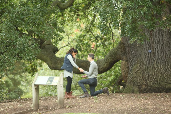 Where to Propose in Kew Gardens, London