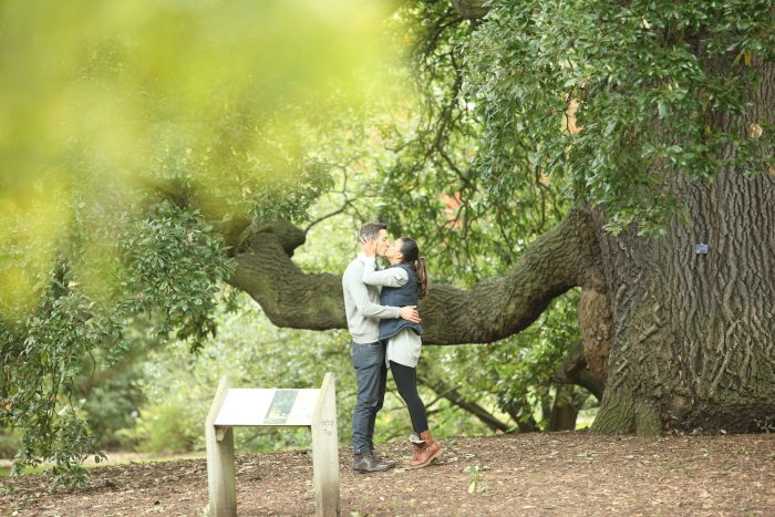 Engagement Proposal Ideas in Kew Gardens, London