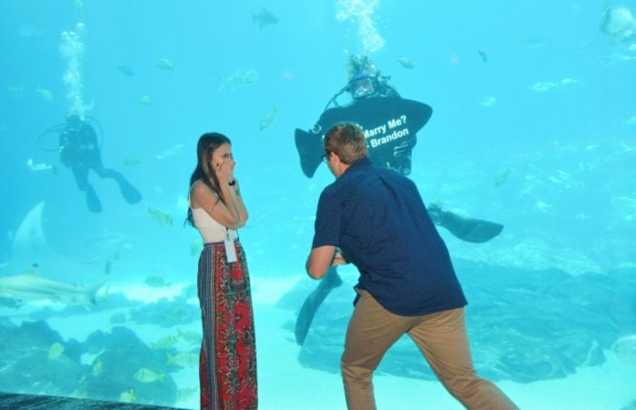 Image 4 of Nicolette and Brandon