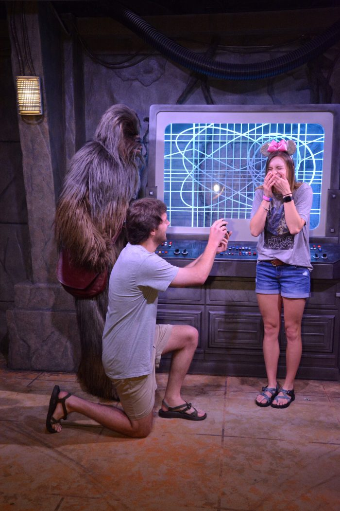 Proposal Ideas Walt Disney World