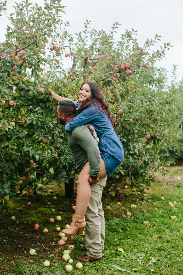 Proposal Ideas Apple orchard