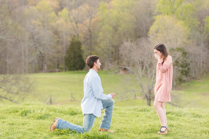 Marriage Proposal Ideas in Knoxville, TN