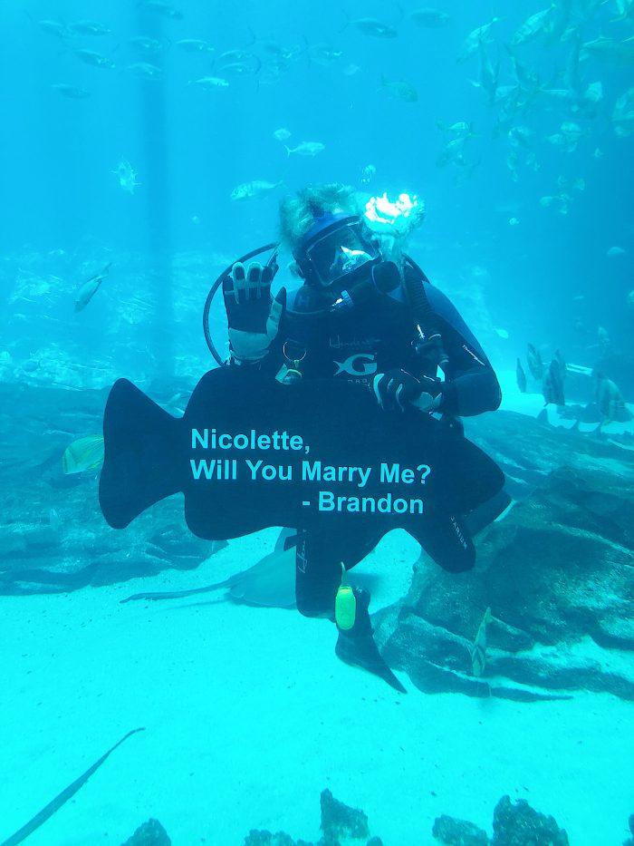 Image 2 of Nicolette and Brandon