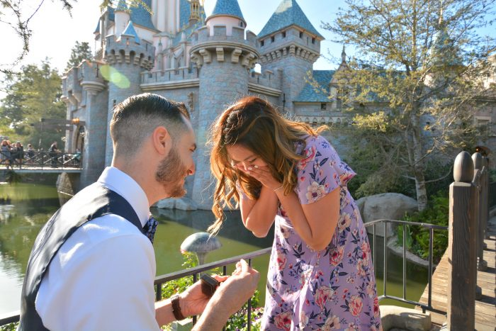 Proposal Ideas Disneyland