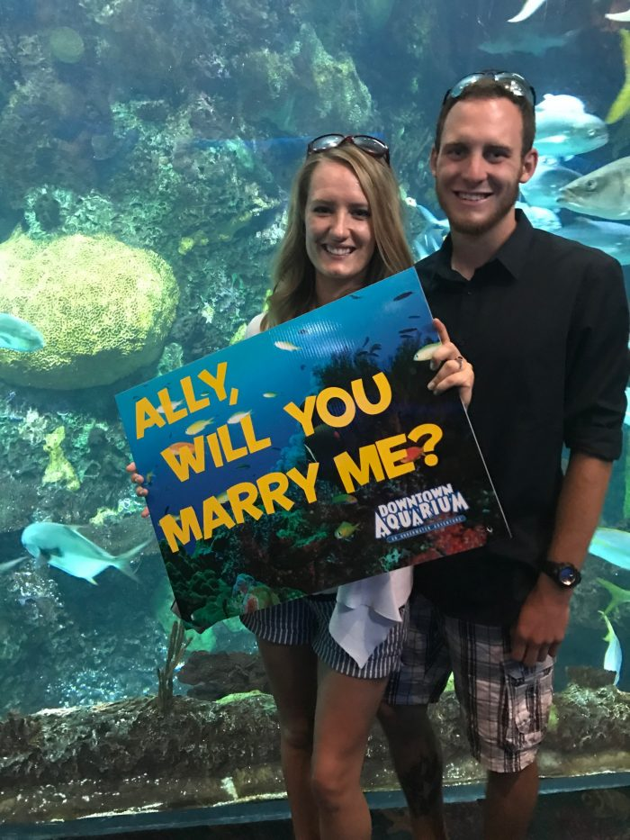 Where to Propose in Denver Aquarium