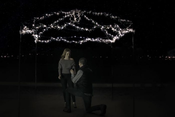 Engagement Proposal Ideas in Forrest Park in St. Louis, MO