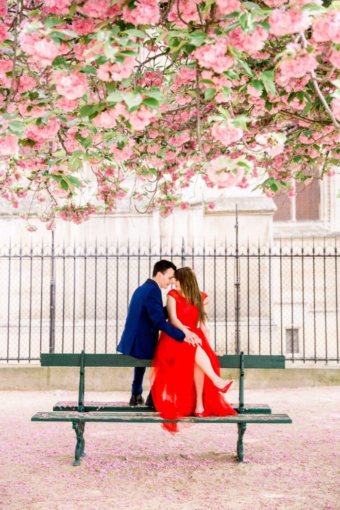 Veronica's Proposal in Paris, France