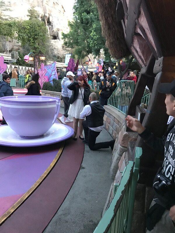 Daniela's Proposal in Disneyland