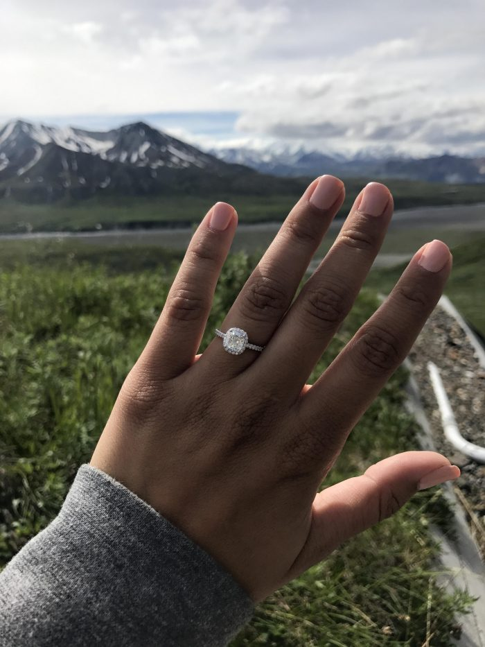 Marissa's Proposal in Denali, Alaska