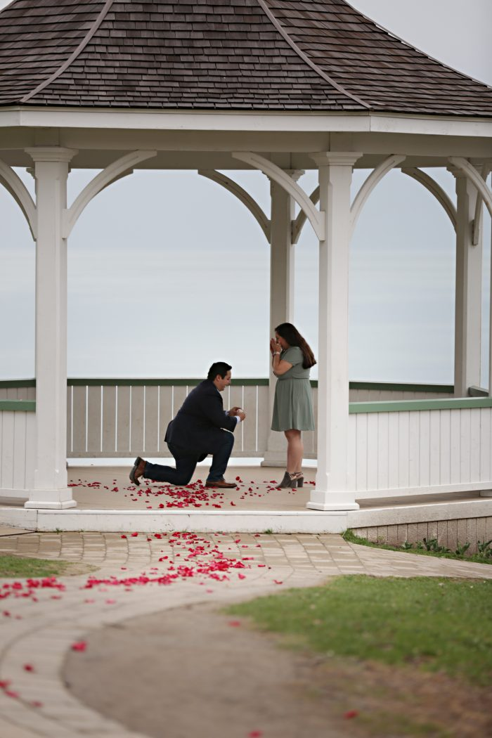 Engagement Proposal Ideas in Niagara-on-the-lake, ON, Canada