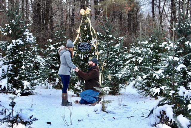 Engagement Proposal Ideas in Krueger's Christmas Tree Farm - Lake Elmo, MN