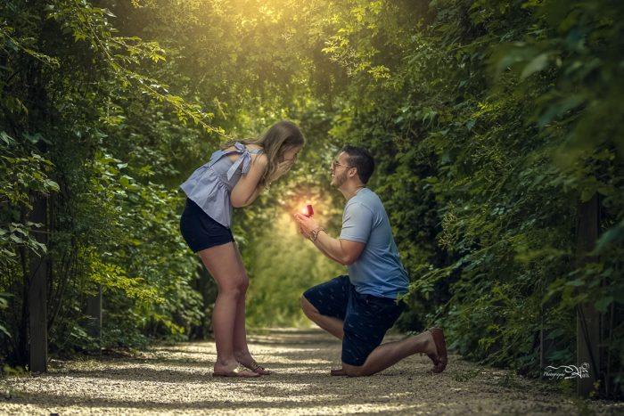 Where to Propose in Planting Fields