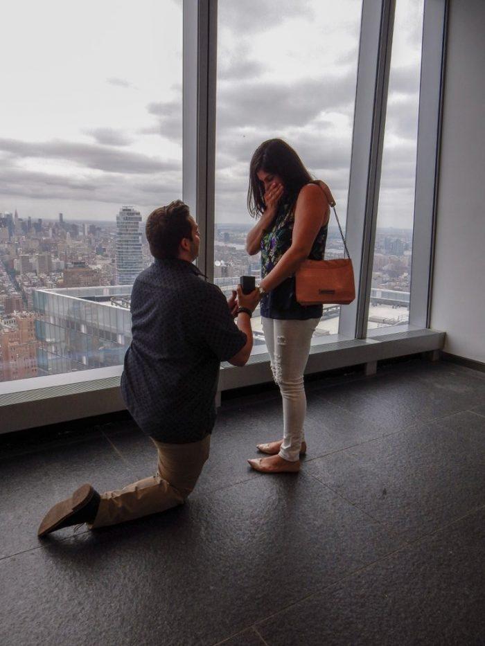 Dana's Proposal in One World Trade Center