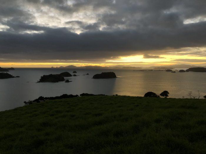 Wedding Proposal Ideas in The Landing (Bay of Islands, New Zealand)