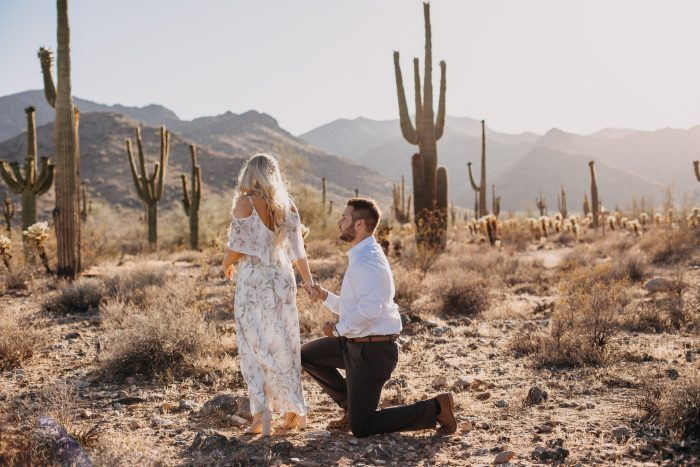 Wedding Proposal Ideas in White Tank Mountains