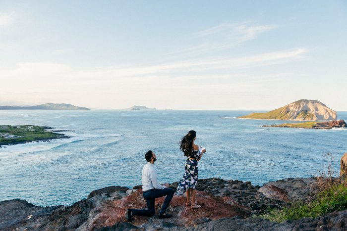 Romee's Proposal in Honolulu