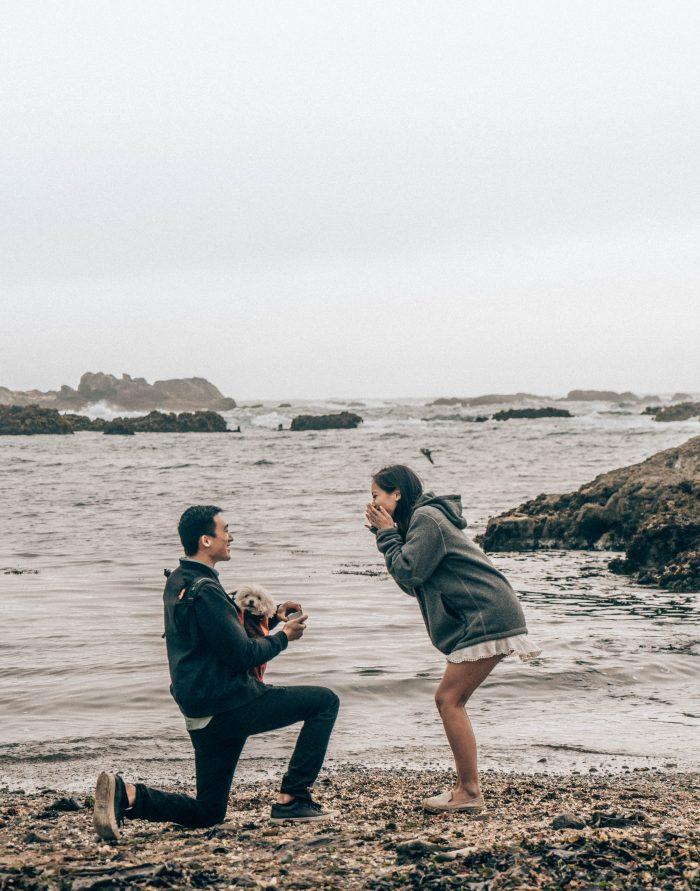 Proposal Ideas Glass Beach, CA