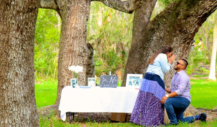 Engagement Proposal Ideas in Matheson Hammock Park