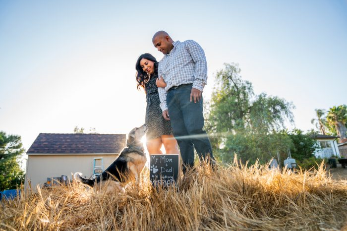 Wedding Proposal Ideas in At his parent's house in Washington state