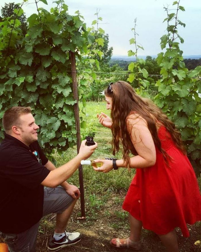 Wedding Proposal Ideas in Millbrook Vinyards and Winery
