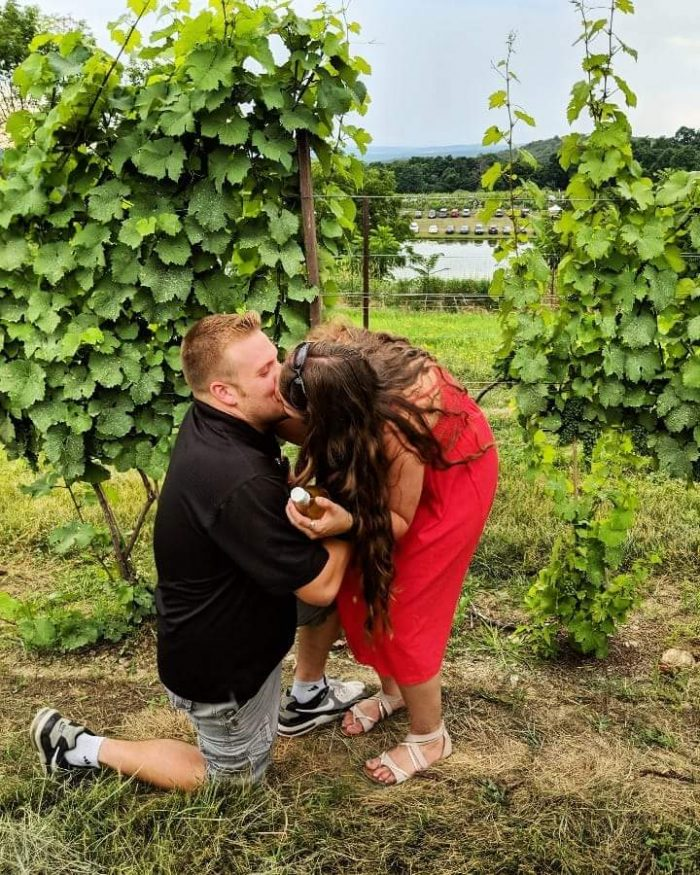 Marriage Proposal Ideas in Millbrook Vinyards and Winery