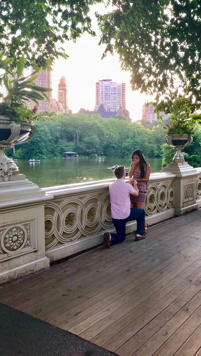 Engagement Proposal Ideas in Central Park, New York City