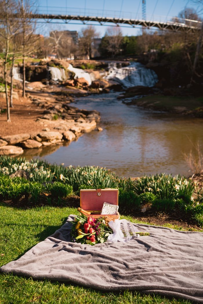 Engagement Proposal Ideas in Greenville, SC