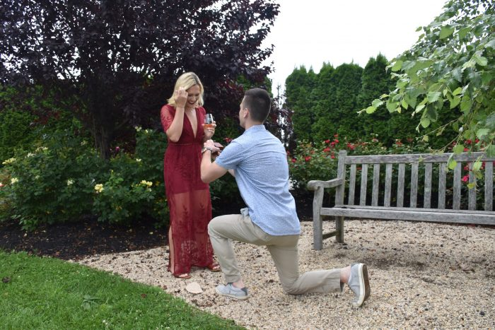 Where to Propose in Martha Clara Vineyards