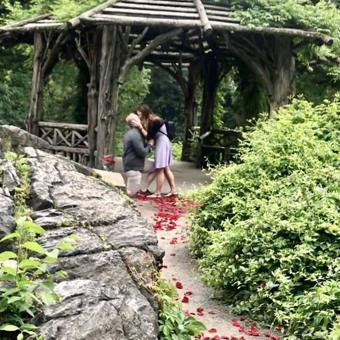Samantha's Proposal in Central park